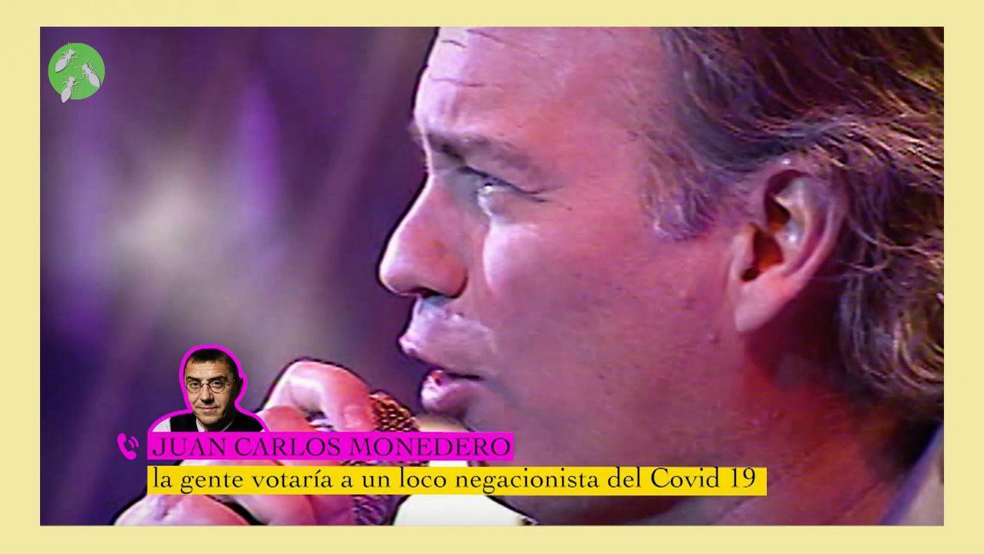 hormigas_20092020
