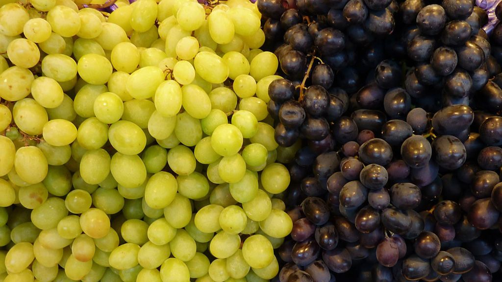 grapes-2680902_1280