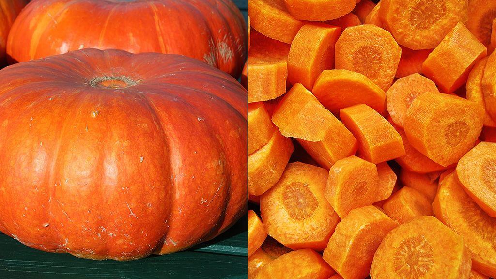 calabaza y zanahoria