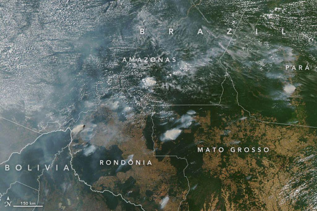 Imagen por satélite de los incendios de la Amazonía