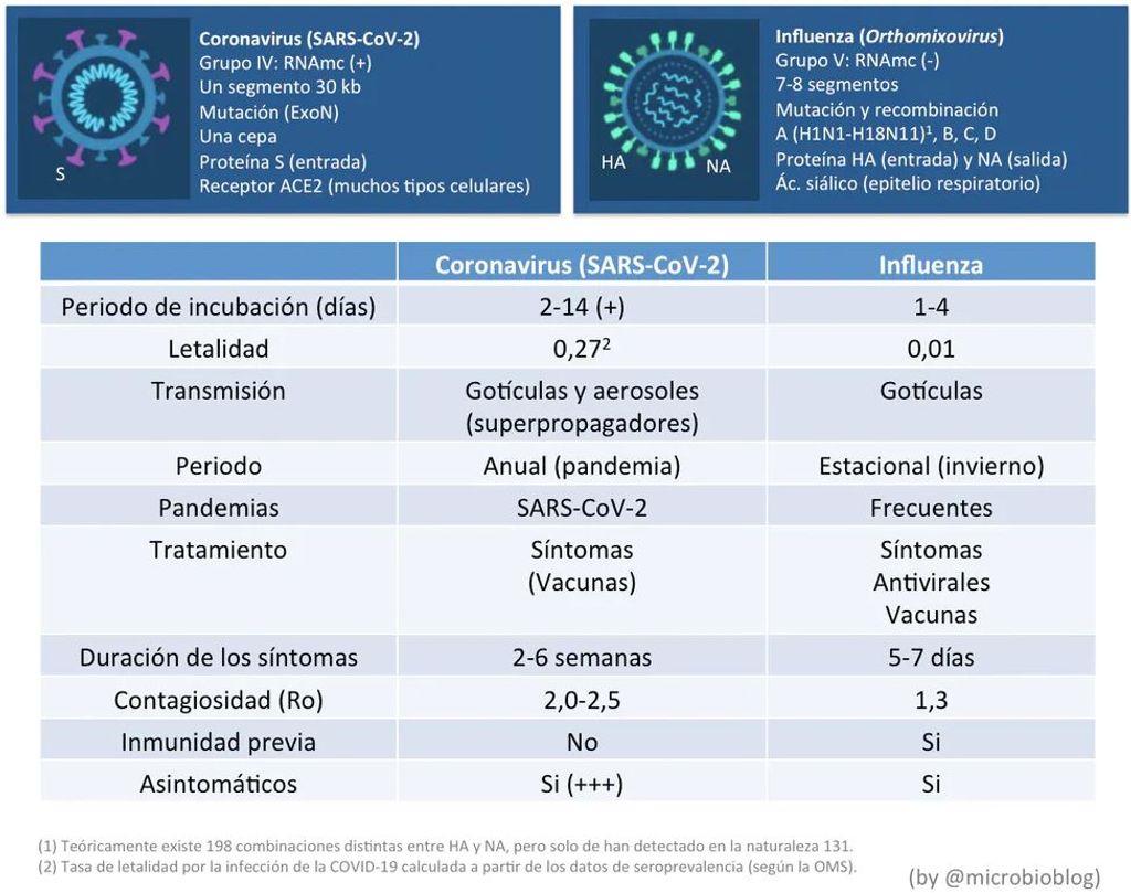 Diferencias entre el virus de la gripe y la covid-19