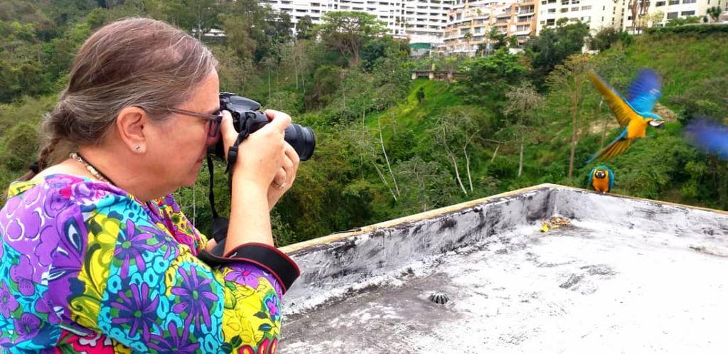 Mabel Cornago,retratista de las guacamayas