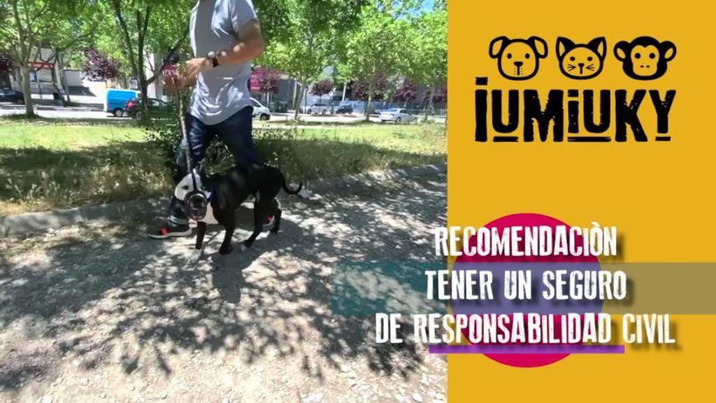 IUMIUKY PGM 14
