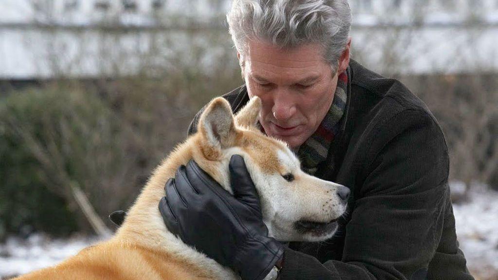 El último adiós a tu perro.