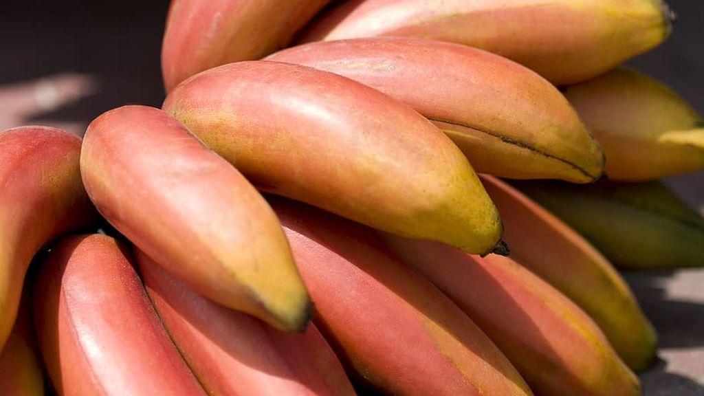 Huevos verdes, plátanos rojos y otros alimentos inusuales con los que sorprender a tus nietos en una comida familiar