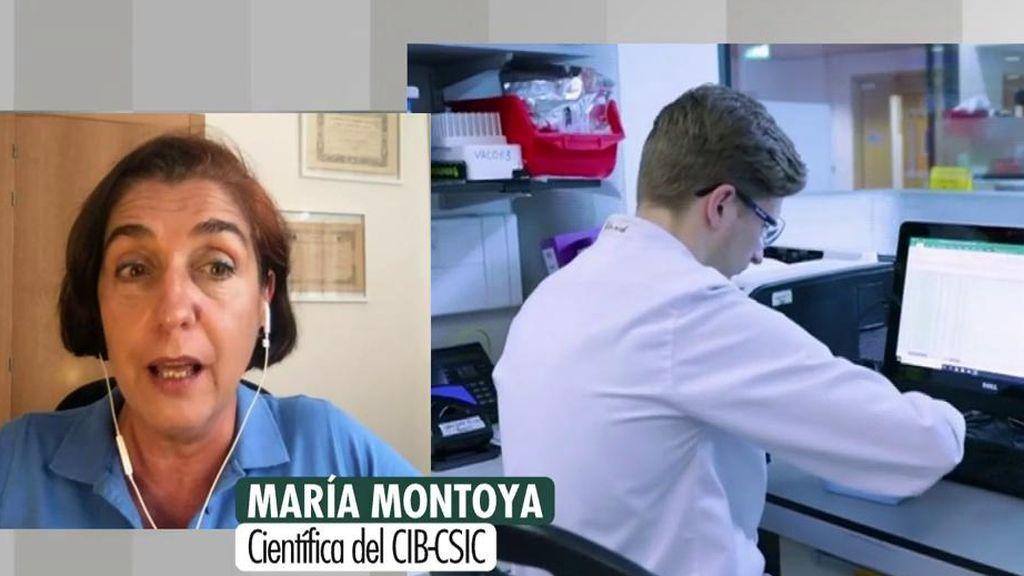 Lo que queda de la vacuna contra el coronavirus