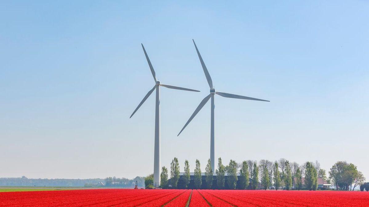 La implantación de energías renovables, el gran reto del siglo XXI para salvar nuestro planeta