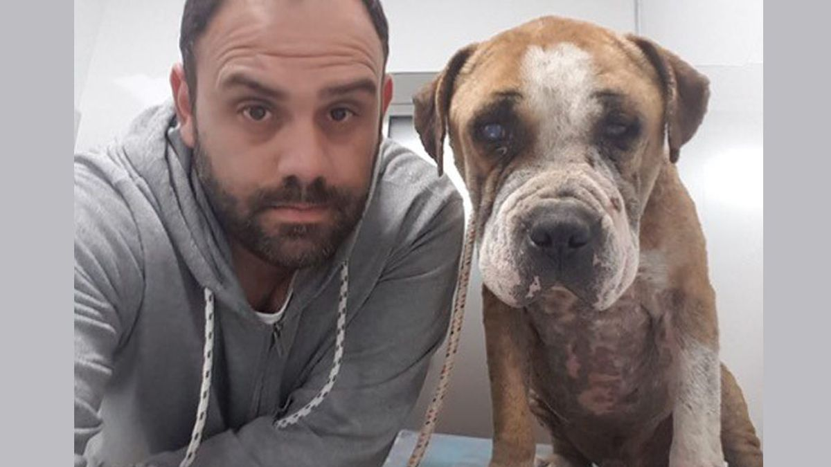 """Conocemos a Juan Gancedo el """"super-poli de los perros"""""""