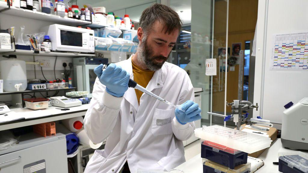 PanSeer, la prueba que podría detectar cuatro años antes hasta cinco tipos diferentes de cáncer