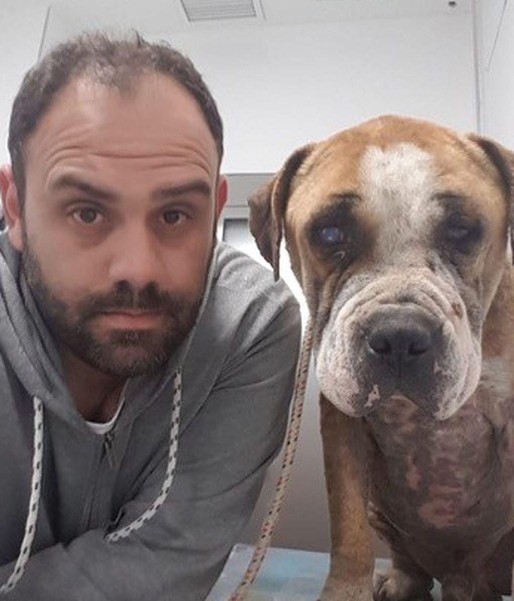 rescatador perros