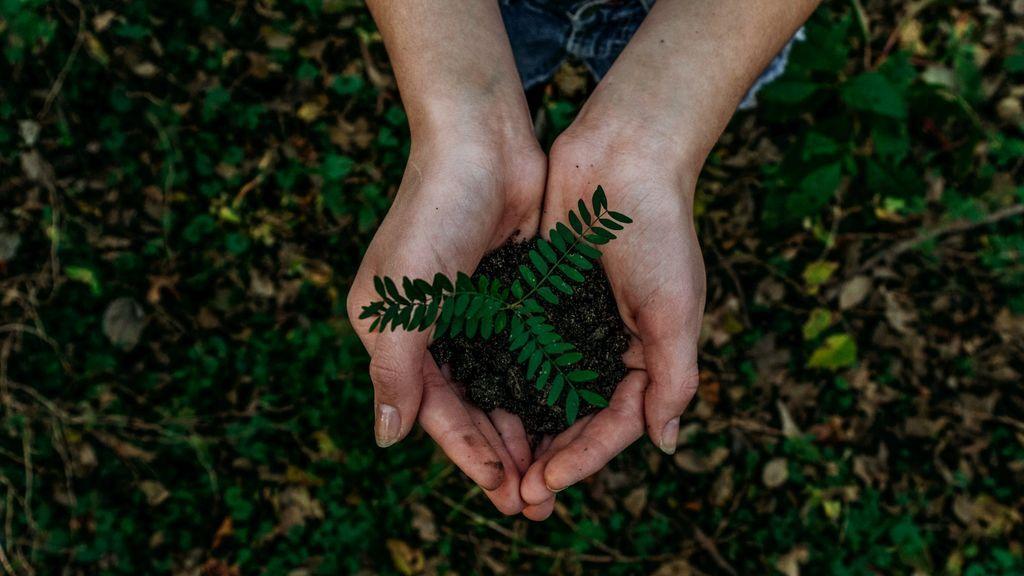 6 cosas que puedes hacer para cuidar el medio ambiente en verano