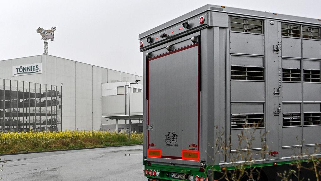 Brote en un matadero alemán: un 'supercontagiador' infectó a personas en un radio de ocho metros