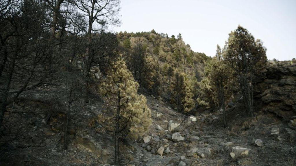 Detectan una docena de seísmos más en el volcán Cumbre vieja en La Palma