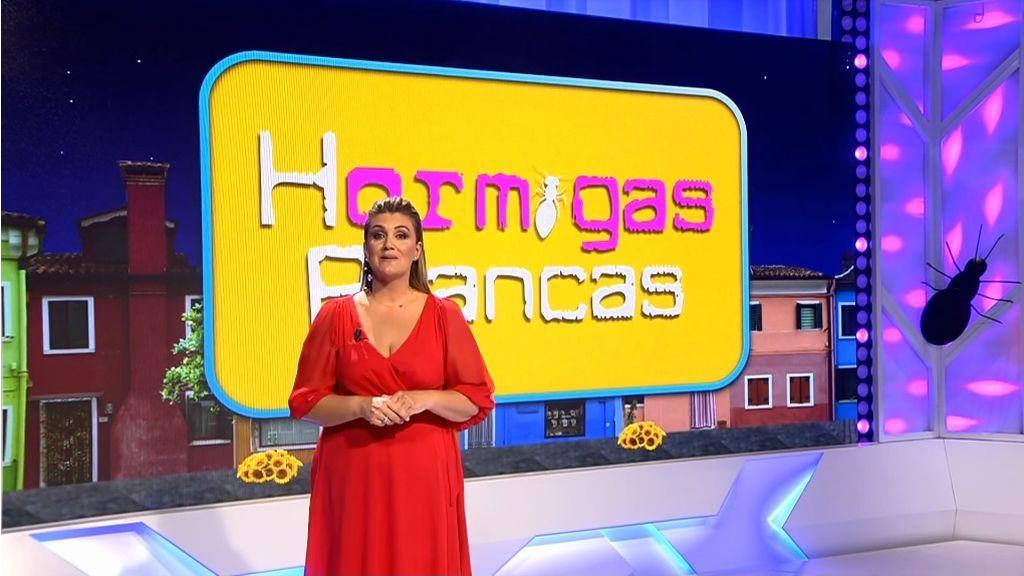 Telecinco se impone el domingo con Informativos Telecinco como lo más visto del día y el estreno de 'Hormigas Blancas' como líder del prime time