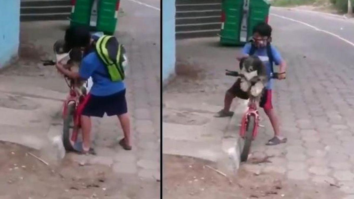 Un niño pone la mascarilla a su perro antes de llevárselo en bicicleta