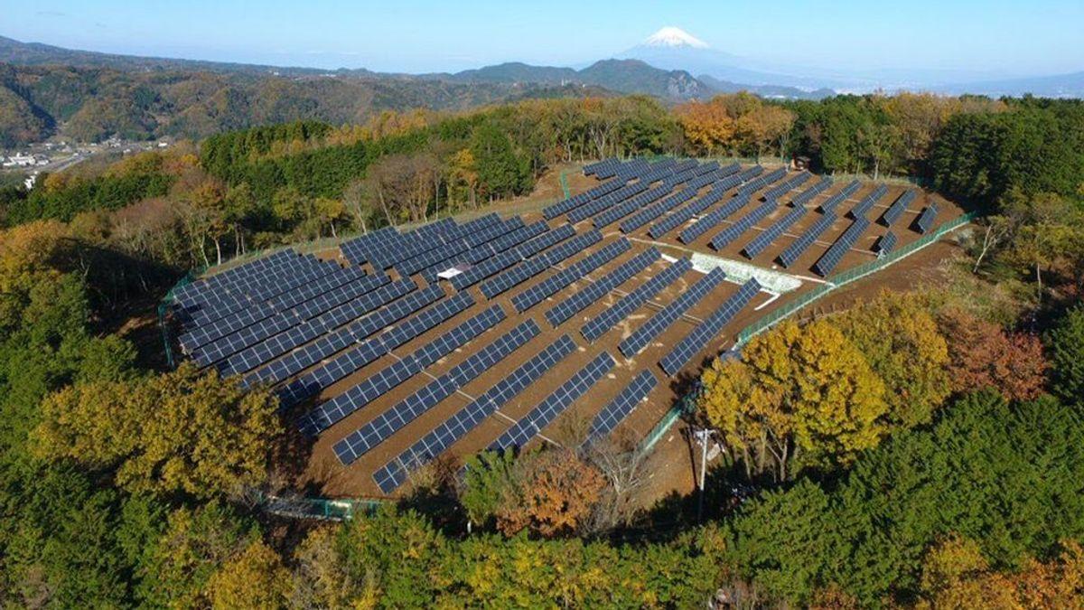 ¿Son las energías renovables más baratas que las no renovables?