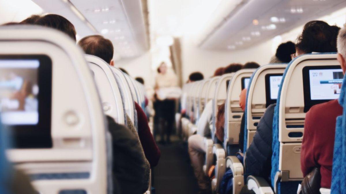 Cinco consejos para un viaje tranquilo en avión con tu mascota