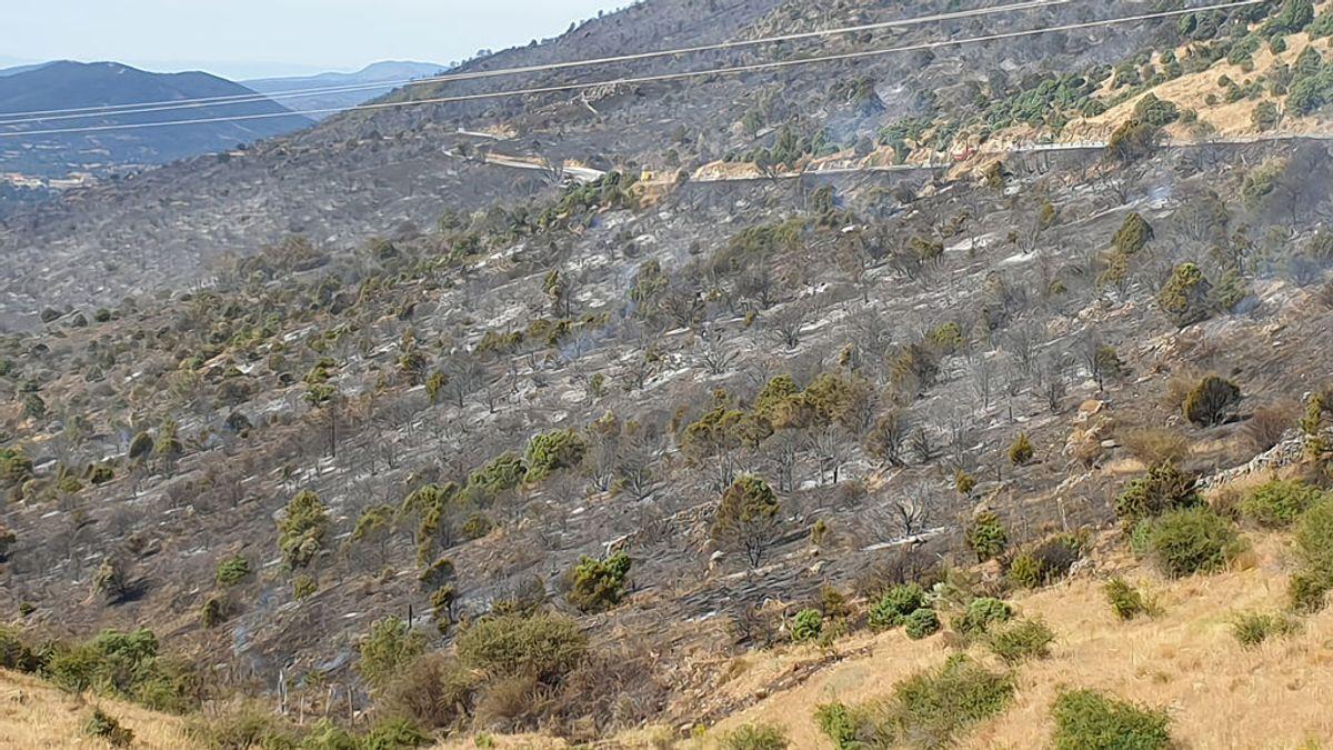 Estabilizado el incendio de Robledo de Chavela tras quemar unas 800 hectáreas