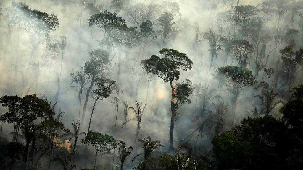 La decadencia de la Amazonia: los Incendios y la deforestación baten un nuevo récord