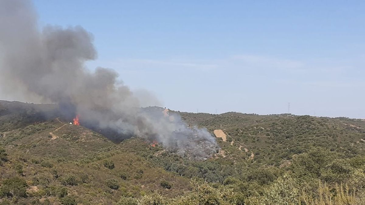 Declarado un incendio forestal en un paraje sevillanos de Aznalcóllar