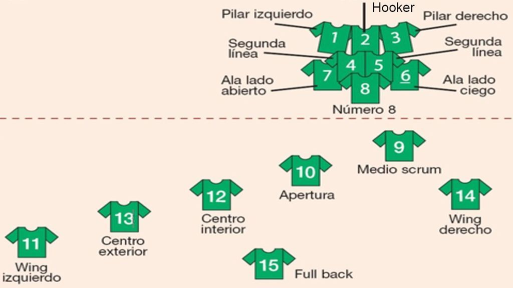esquema de las posiciones rugby en un equipo