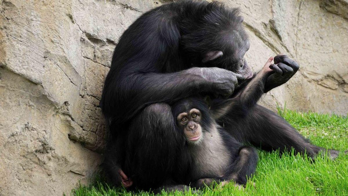 Djibril y su madre adoptiva Eva