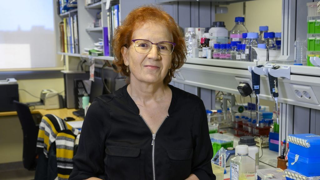 """Margarita del Val, viróloga, sobre los rebrotes: """"España está ya en una segunda ola"""""""