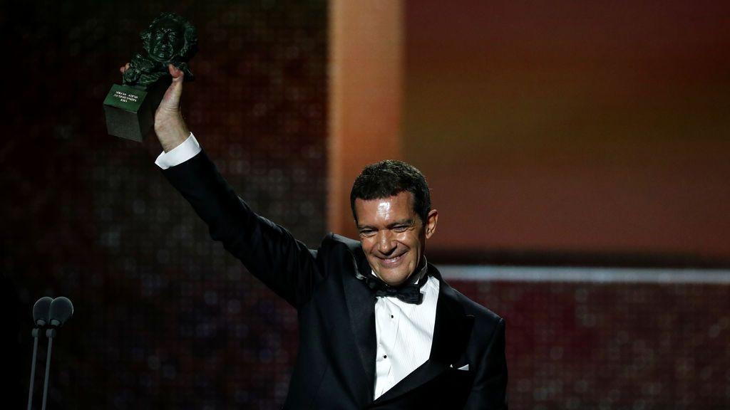 Antonio Banderas con su goya a mejor actor por la película 'Dolor y gloria', en los premios de este año