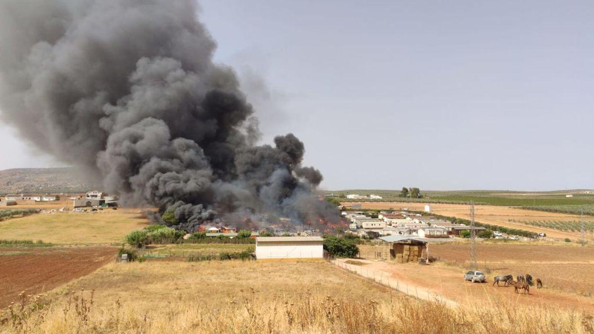 Declarado un incendio en un camping en Mollina que obliga a evacuar a 90 personas