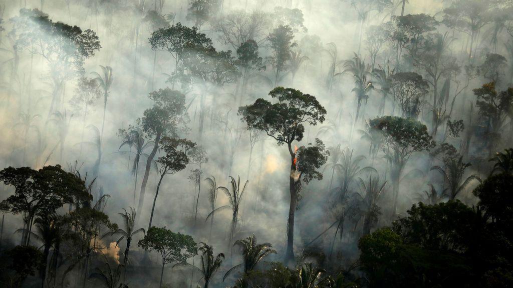 El Amazonas brasileño arde de nuevo