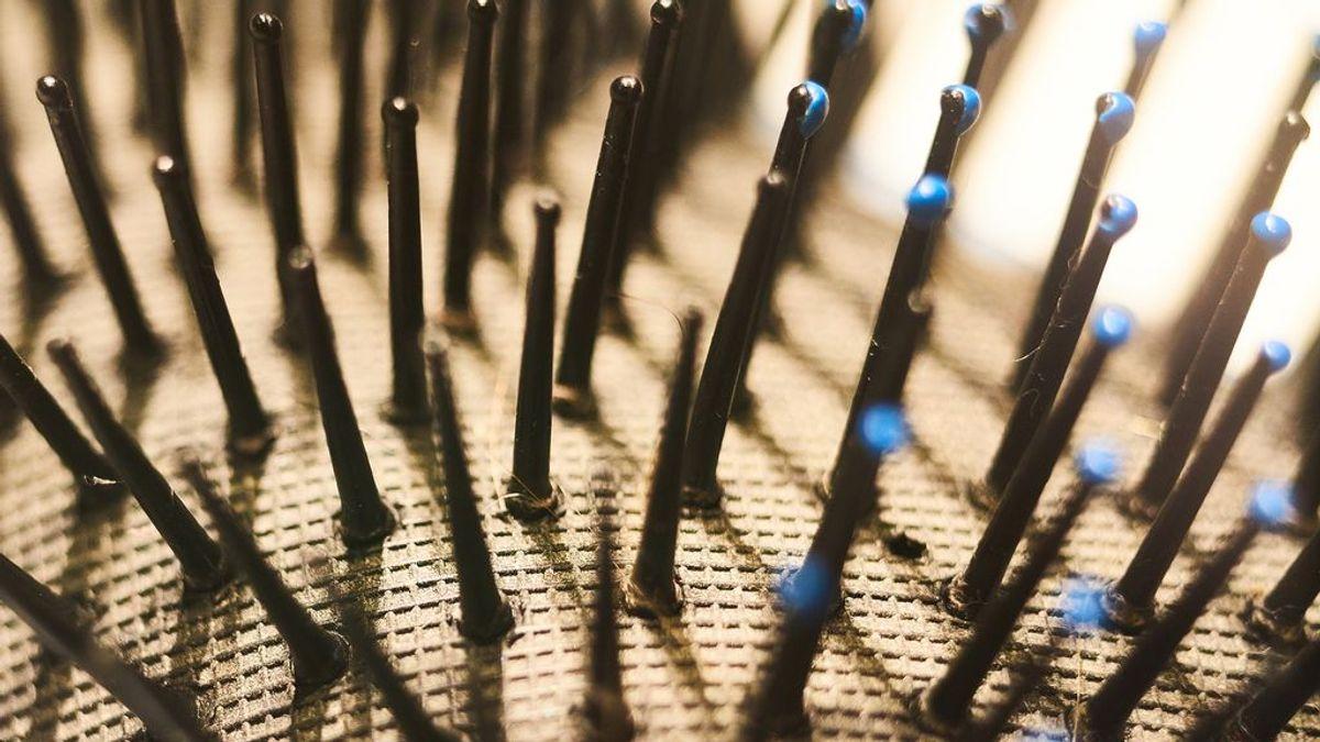 Por qué debes limpiar el cepillo y peine del pelo: cómo desinfectarlos