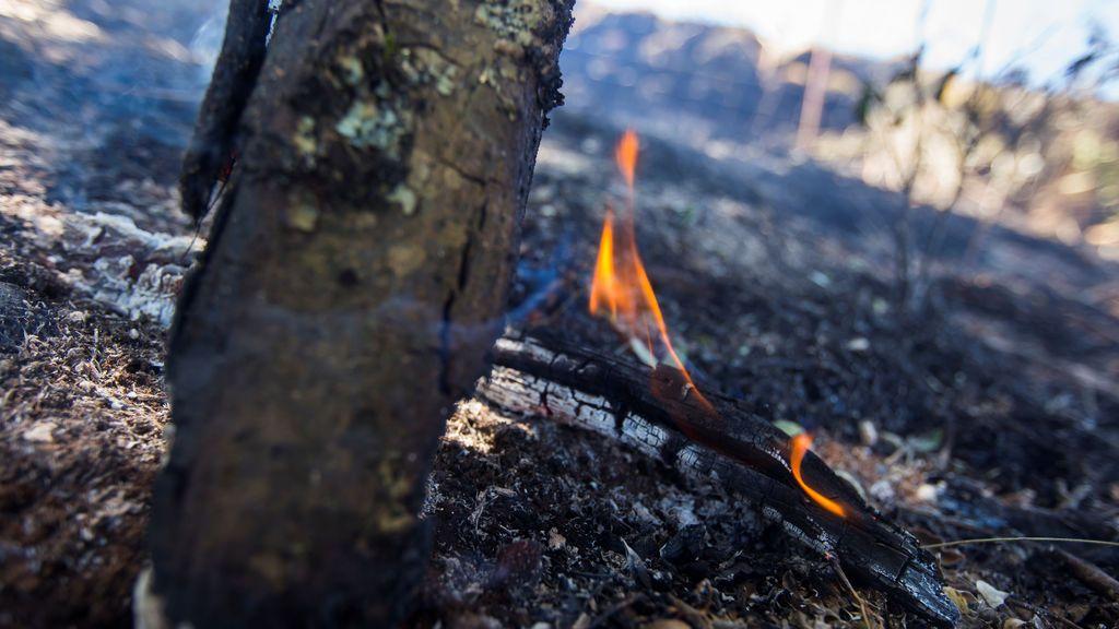 A pesar de los incendios, se ha reducido un 60 % la superficie quemada en España respecto a 2019