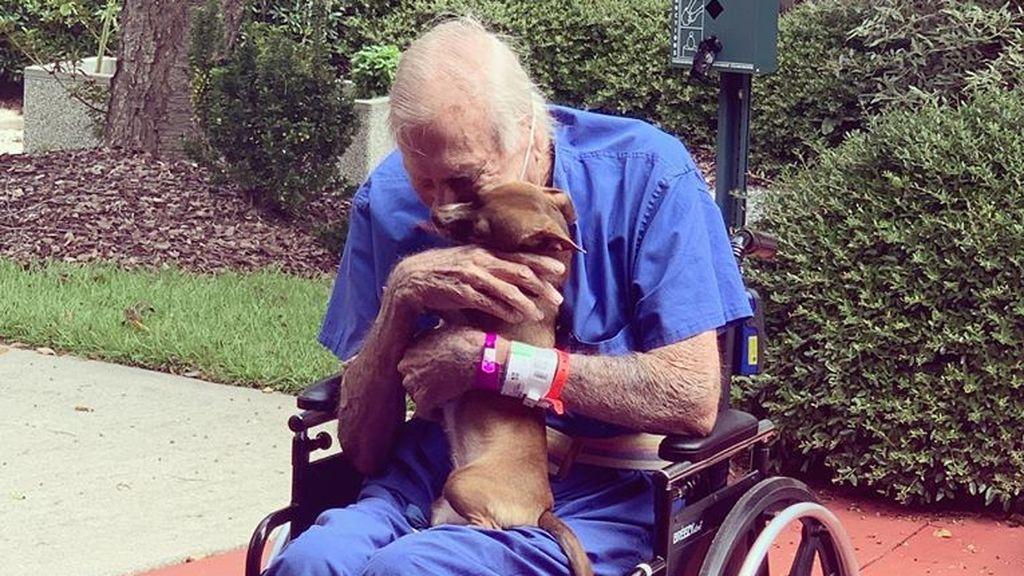 Un anciano de 86 años sufre un derrame cerebral y se salva gracias a su chihuahua
