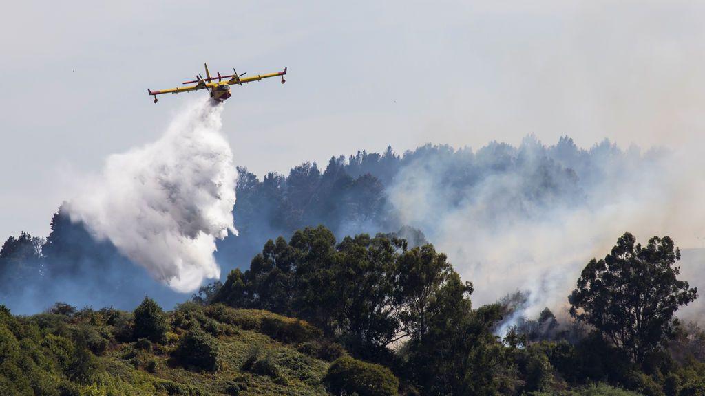 Gran Canaria: el incendio que tardó 40 días en extinguirse en 2019 empezó una línea eléctrica