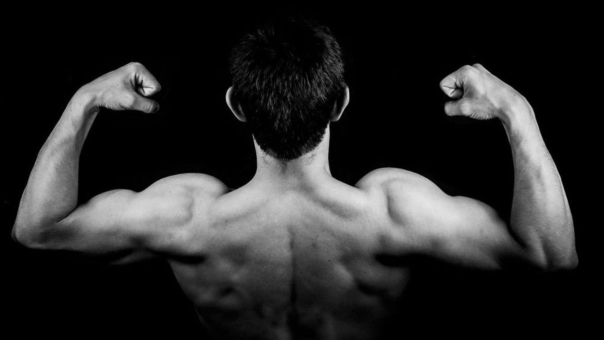 Seis ejercicios básicos para fortalecer tus hombros