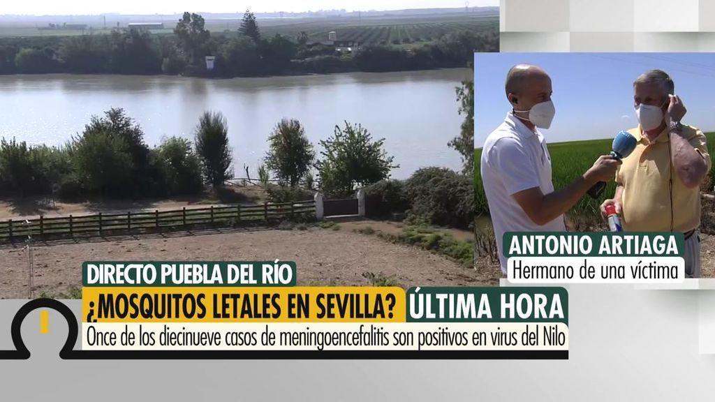 """Meningoencefalitis por el virus del Nilo en Sevilla: """"Pido la mayo difusión, que los científicos investiguen"""""""