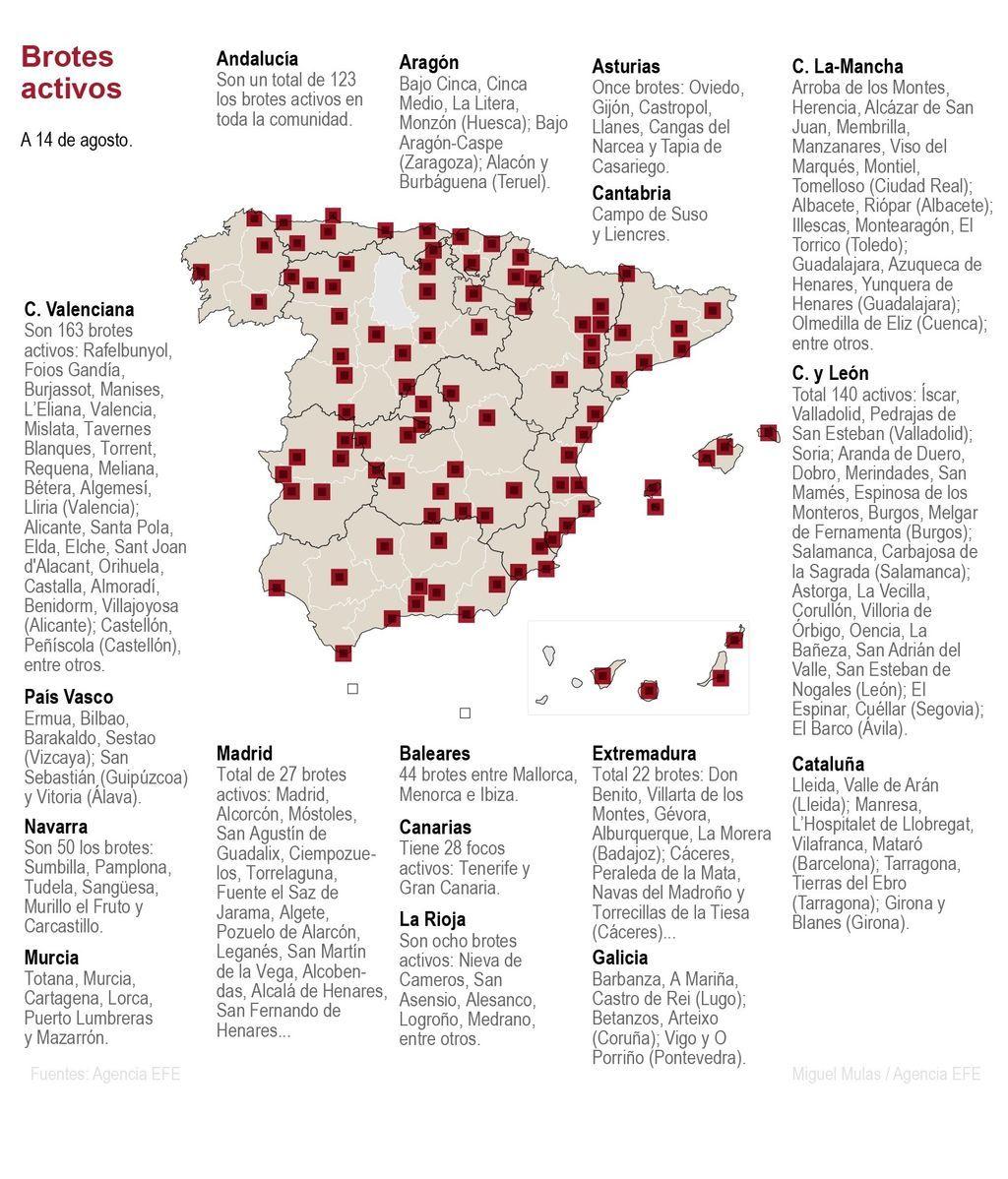 Brotes activos en España: