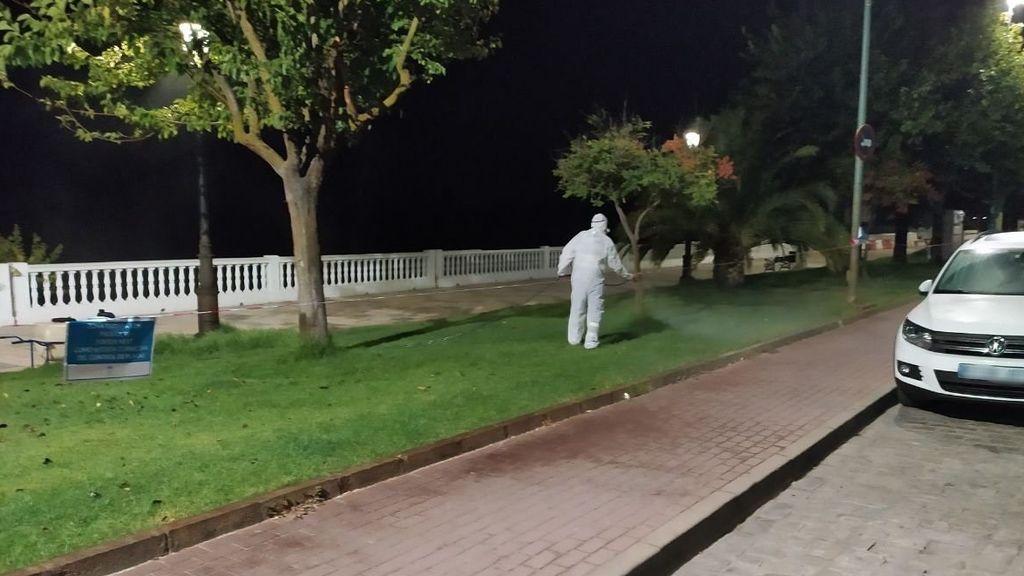 Ascienden a 31 los sospechosos en Sevilla de tener fiebre del Nilo, con 25 hospitalizados, nueve de ellos en UCI