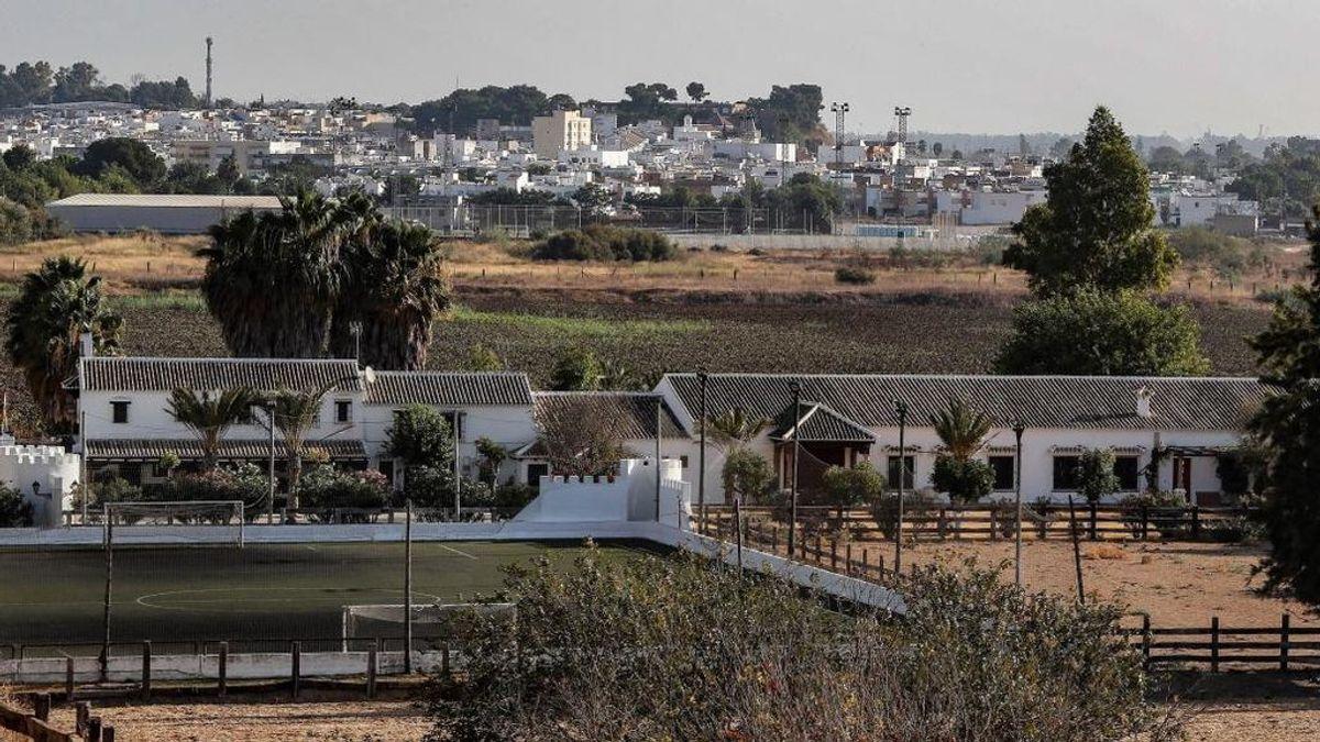 Una menor de 14 años, entre los ingresados por la meningoencefalitis asociada a mosquitos en Sevilla