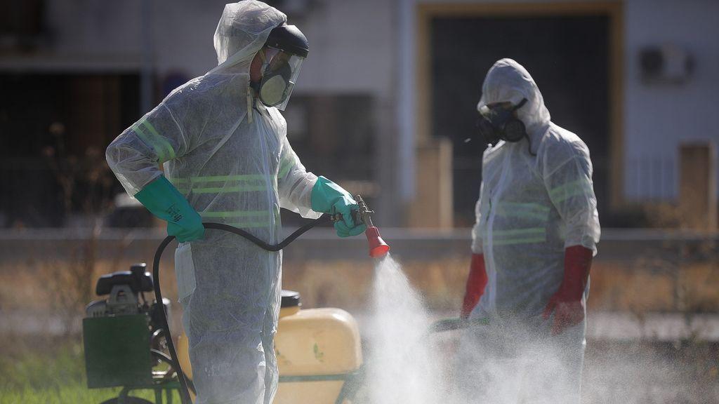 La fiebre del Nilo se mantiene estable en Sevilla sin ningún caso detectado en la última jornada