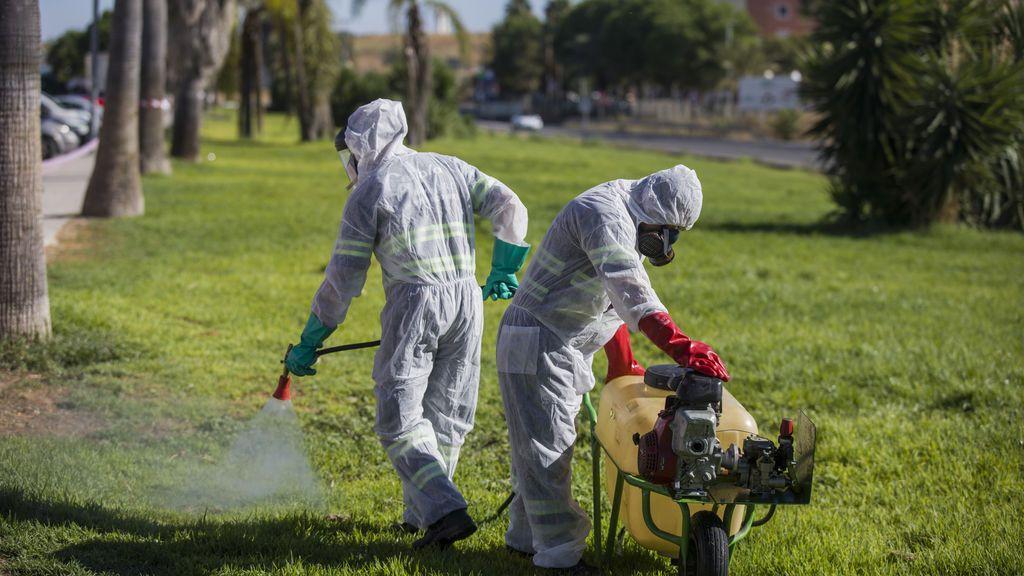 Ascienden a 26 los ingresados por fiebre del Nilo en Sevilla, ocho de ellos en UCI