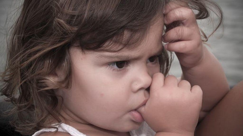 El atún y el helado, entre los alimentos que atraen a los mosquitos: así puedes proteger a tus hijos de las picaduras