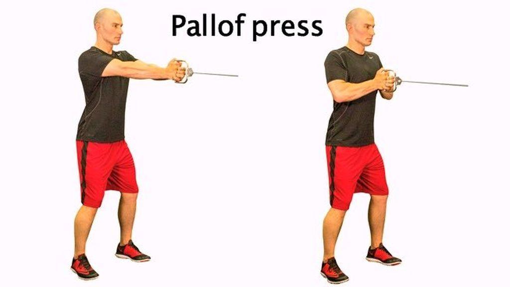 secuencia del ejercicio press pallof