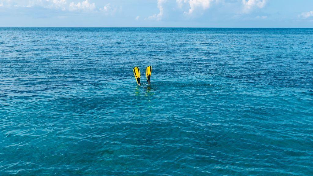 Buceo para dummies: consejos para tu primera inmersión