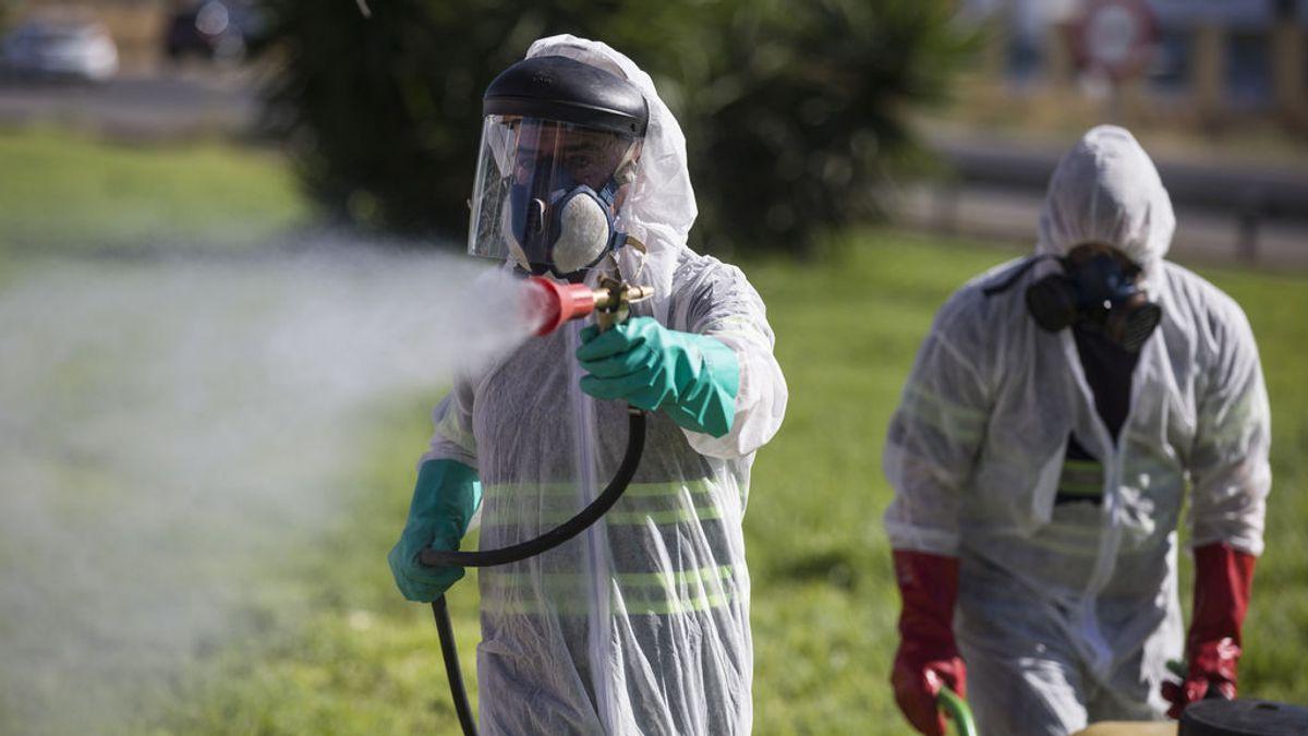 El virus del Nilo se expande: Primer caso confirmado en la otra orilla del Guadalquivir