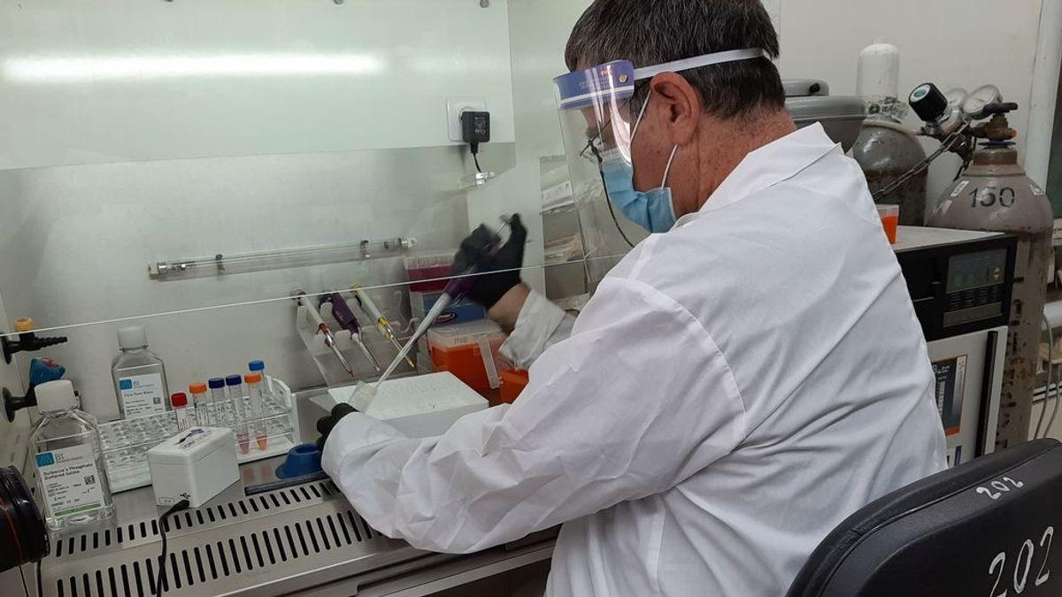 Las mujeres, más inmunes ante el coronavirus que los hombres según un estudio