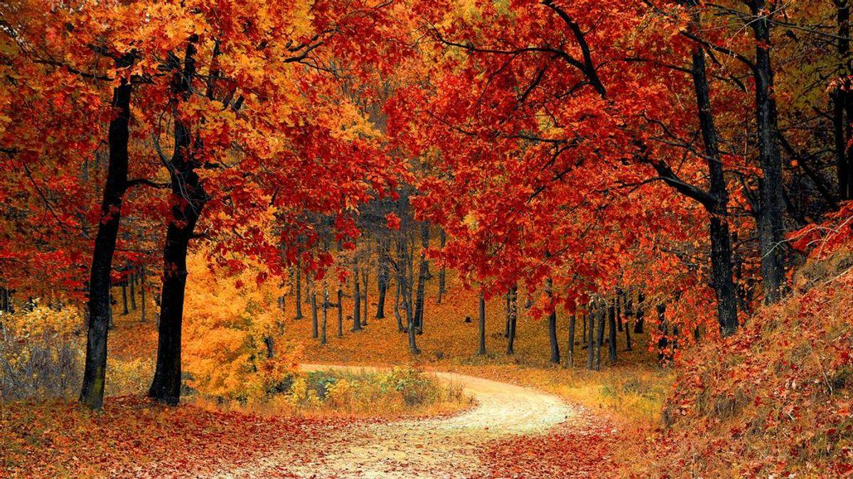 Septiembre es el mes que da la bienvenida al otoño.