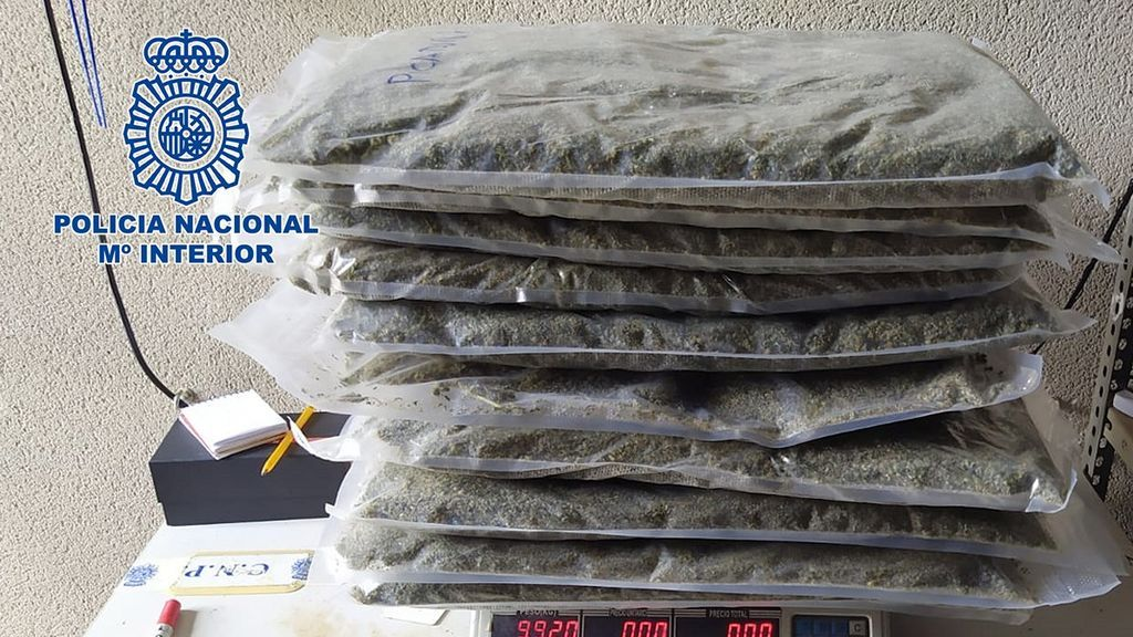 Marihuana lista para su comercialización