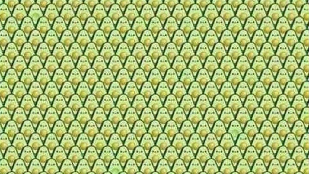 Reto visual: ¿serás capaz de encontrar a los tres aguacates sin semilla?
