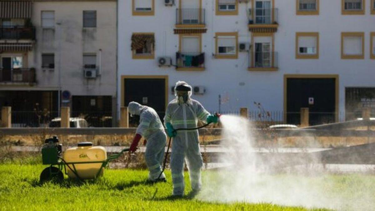Los afectados por el virus del Nilo en Sevilla superan ya el medio centenar de personas